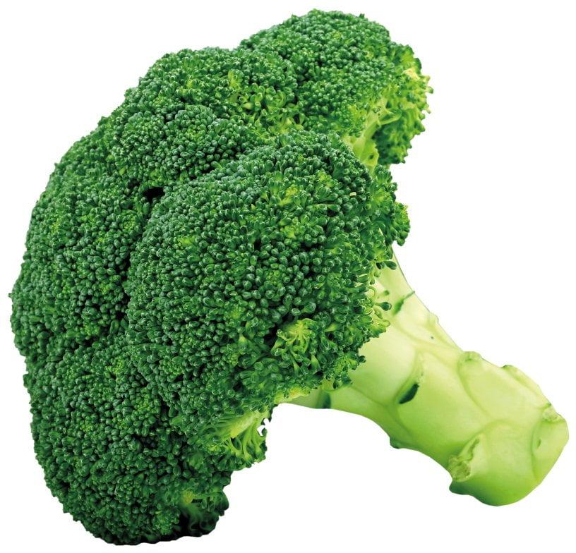 broccoli paul leegwater