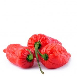 Habanero rood