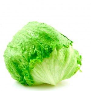 IJsbergsla - Iceberg lettuce