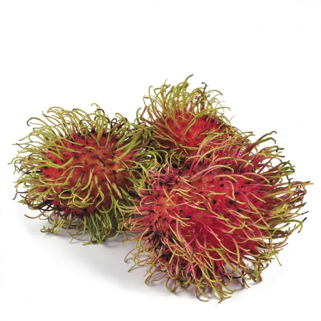 Exotic fruit - Paul Leegwater