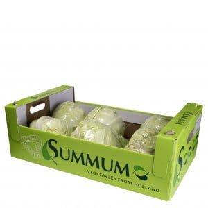 Spitskool geseald doos Summum