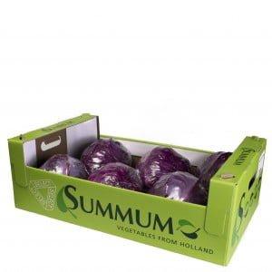 Rode spitskool geseald doos Summum