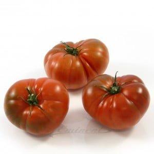 Marmande tomaten