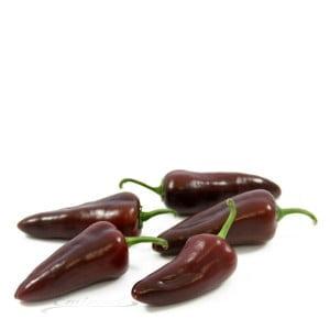 Paprika sweetbite bruin
